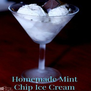 Homemade Mint Chip Ice Cream