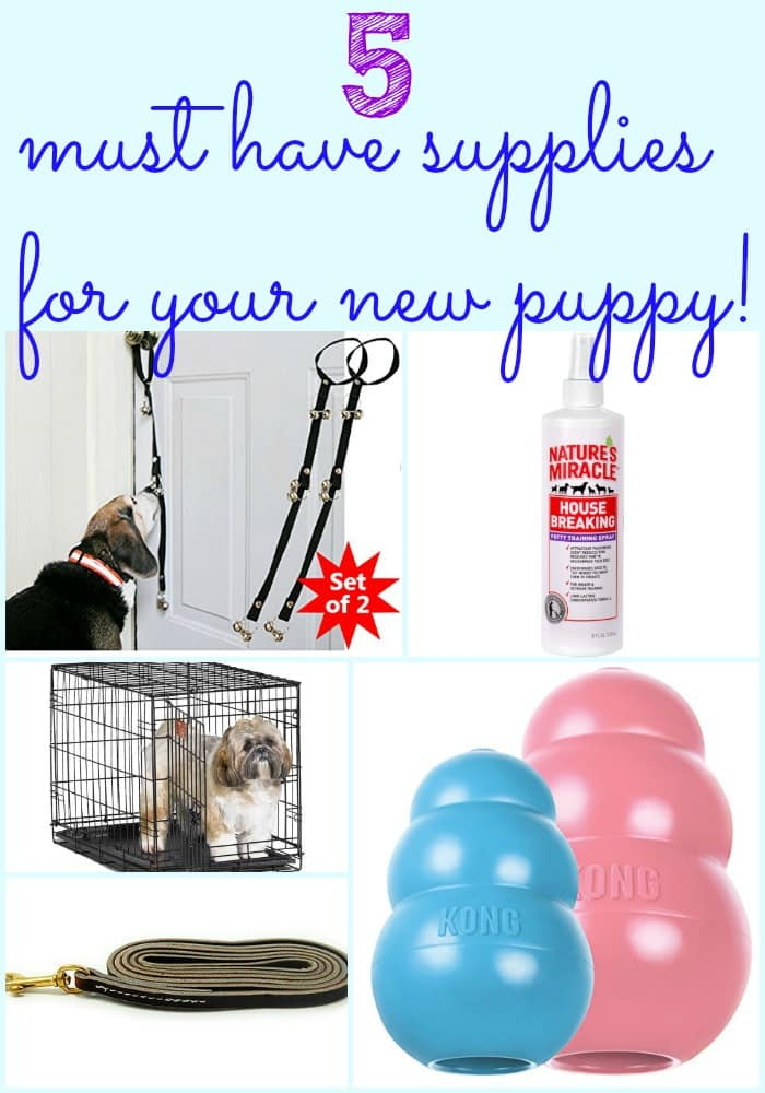 Bringing home a new puppy is so exciting! Have you thought about all the supplies that go along with a new puppy? Here are 5 supplies you must have!
