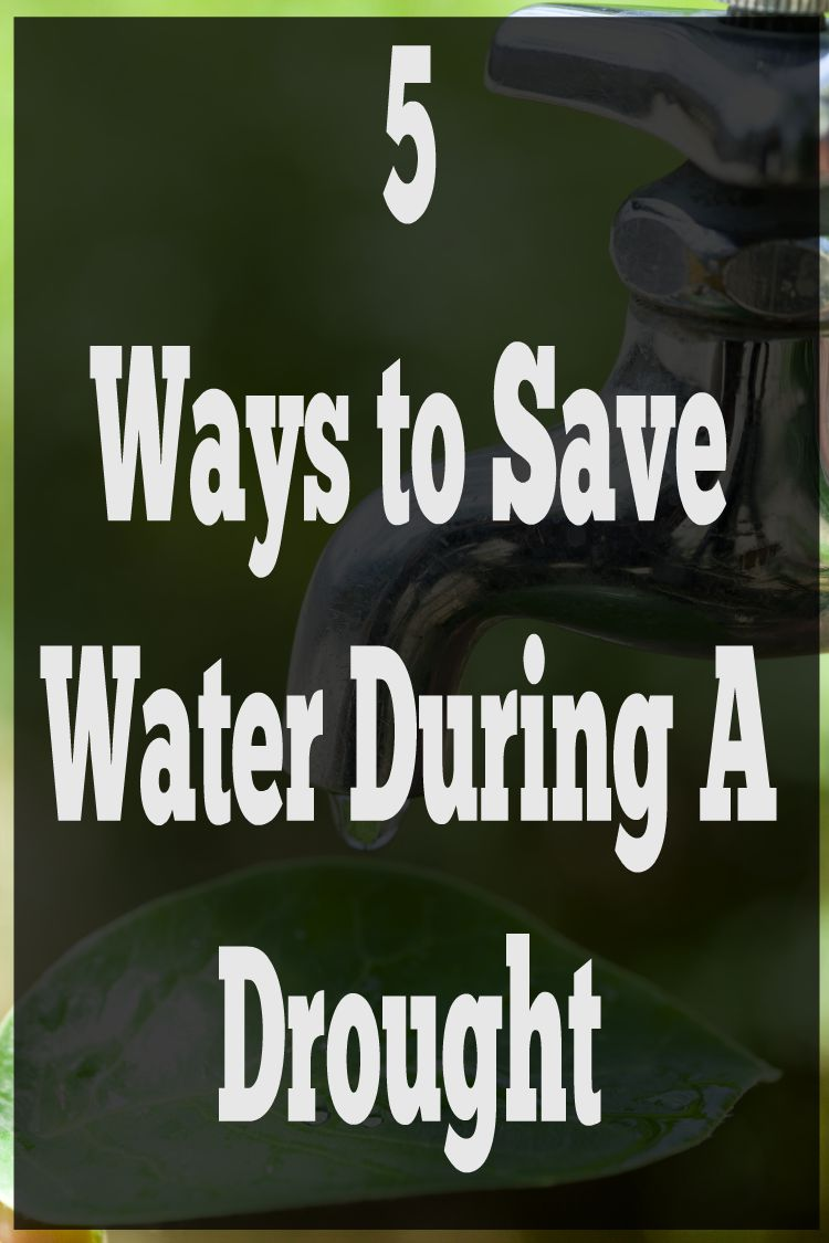 How to save water during a drought