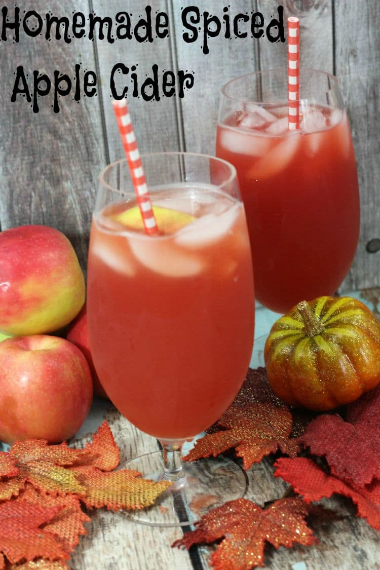 Nothing says fall like the house smelling like homemade spiced apple cider. This apple cider recipe is so delicious and so easy to make.