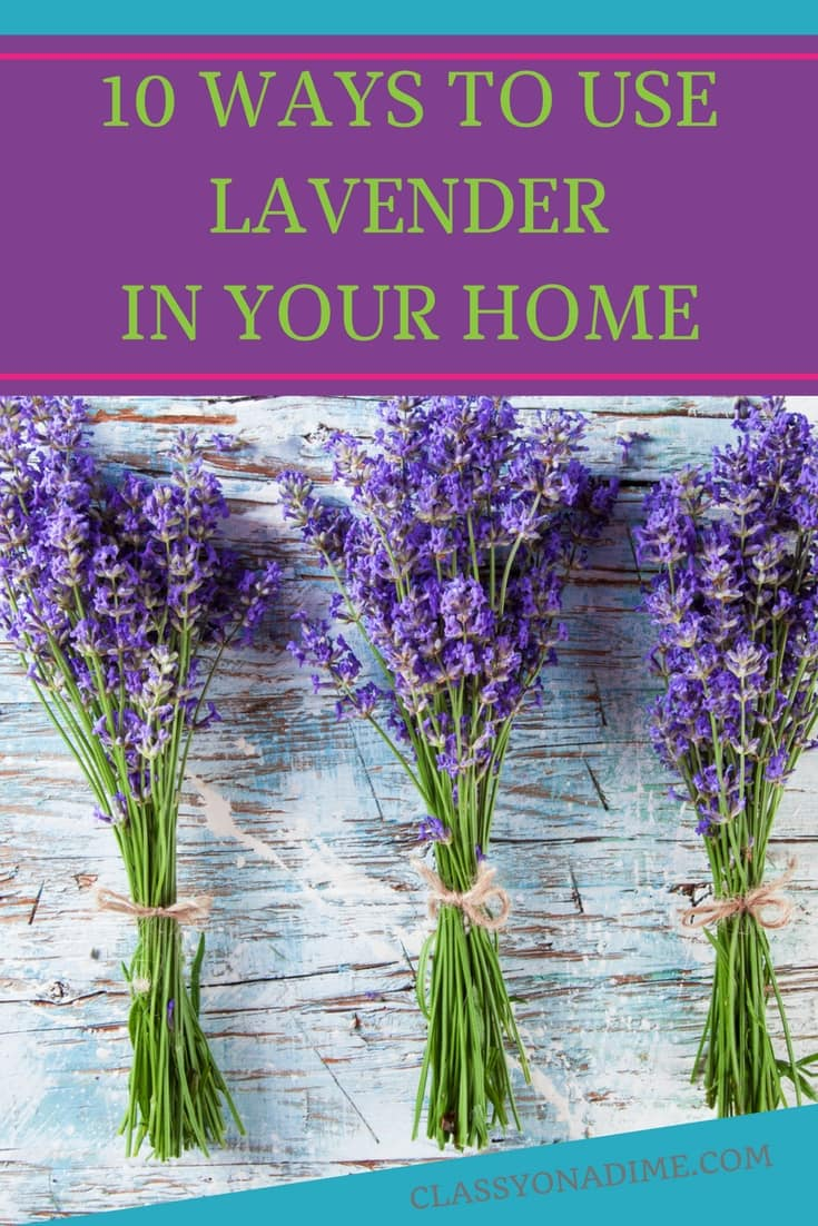 Here some easy ways to use lavender in the home. You'll also find some great lavender recipes